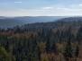 Baumwipfelpfad Bad Wildbad