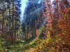 P1060528_29_30_easyHDR-vivid-colors