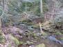Wildpark Pforzheim Monbach